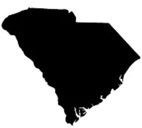 South Carolina CEUs LPCs