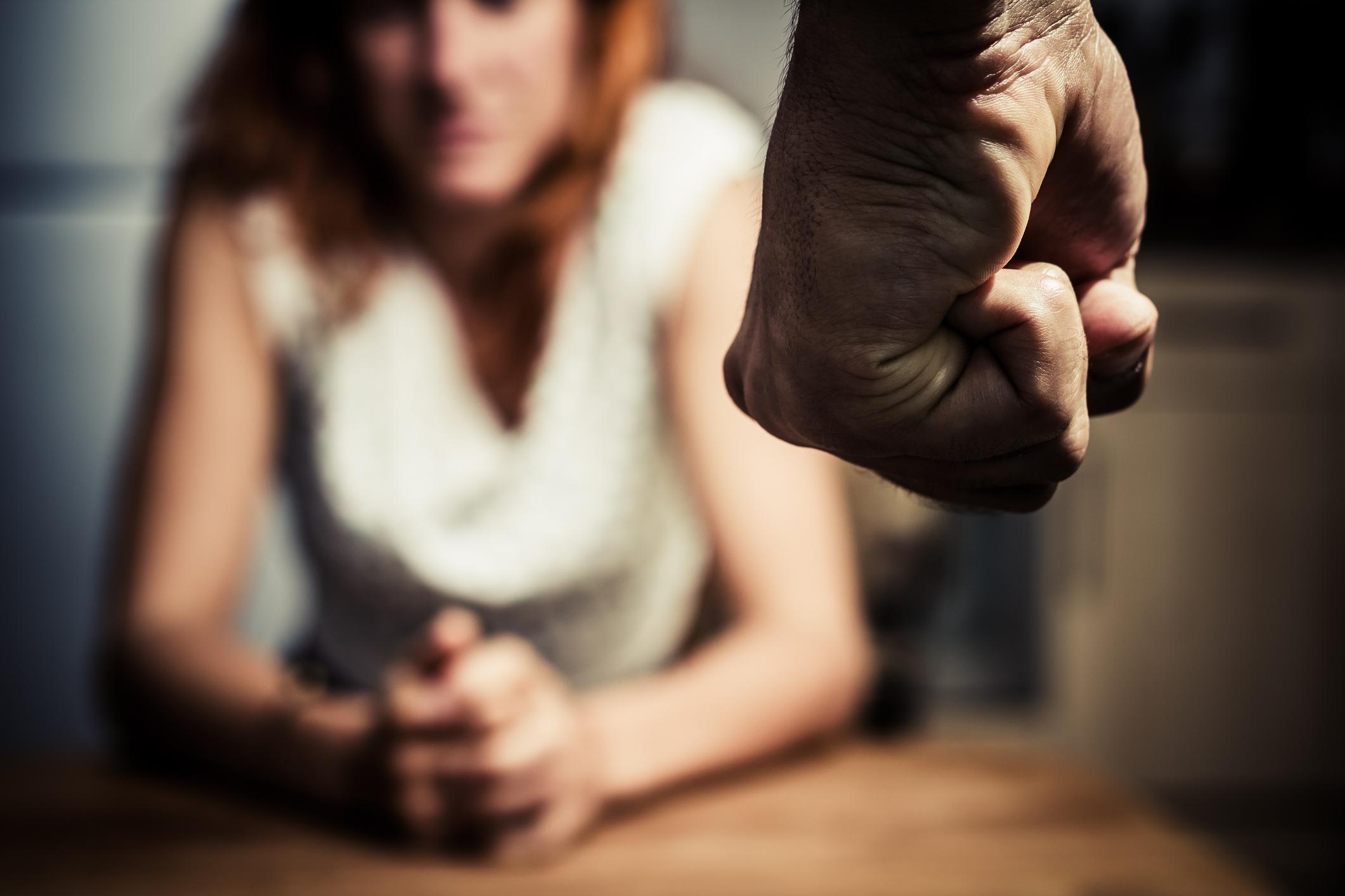 Domestic Violence (Florida) (2CE)